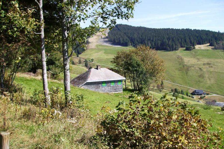 Nach dem Zusammenbruch des nationalsozialistischen Regimes wurde Heidegger die Lehrbefugnis entzogen. Der Philosoph lebte Jahre zurückgezogen in seiner Berghütte in Todtnauberg im Schwarzwald.